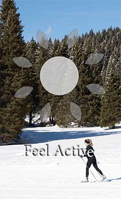 feeel active icona